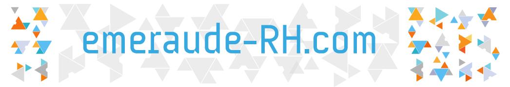 aidez nous choisir changement de com chez emeraude cabinet recrutement rennes 35. Black Bedroom Furniture Sets. Home Design Ideas
