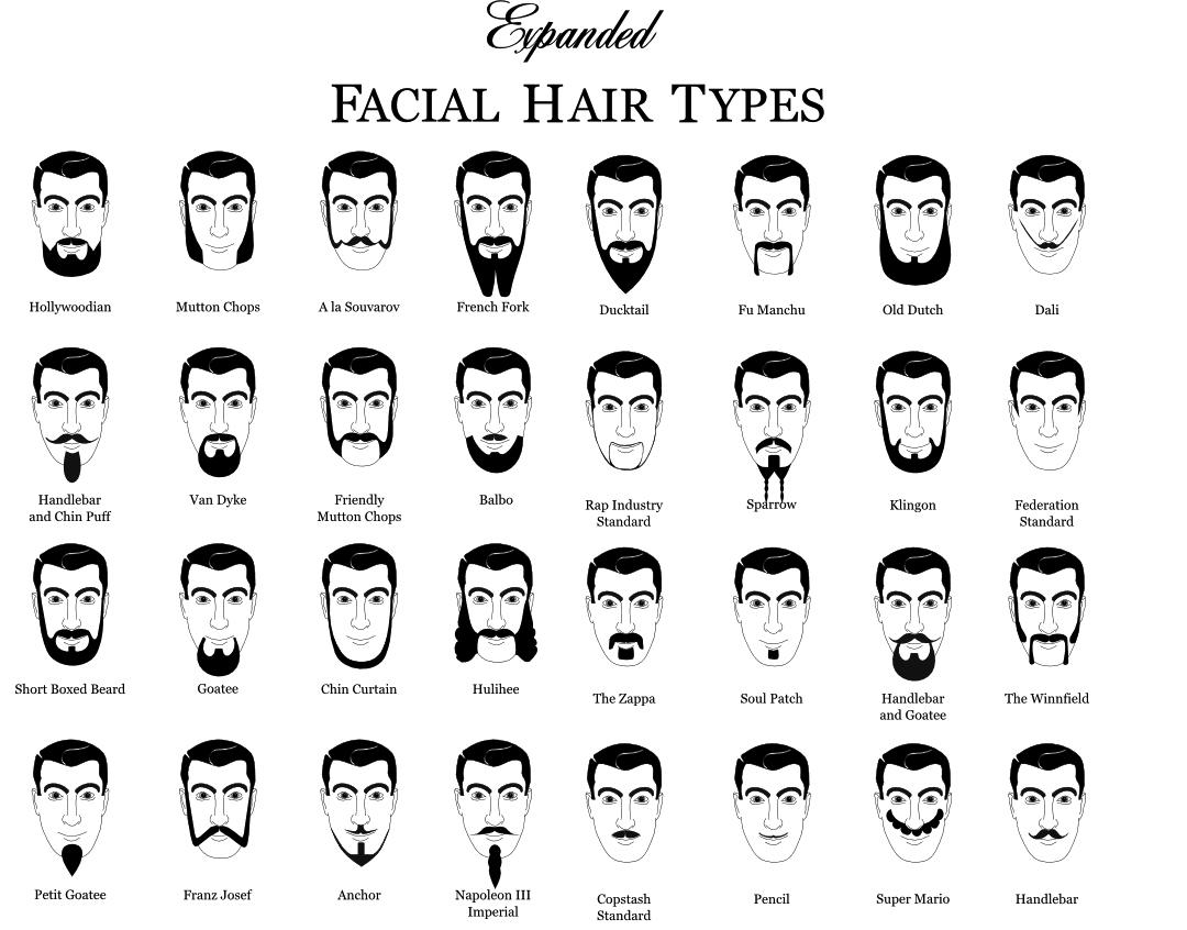 beard-chart-graphic-design-7